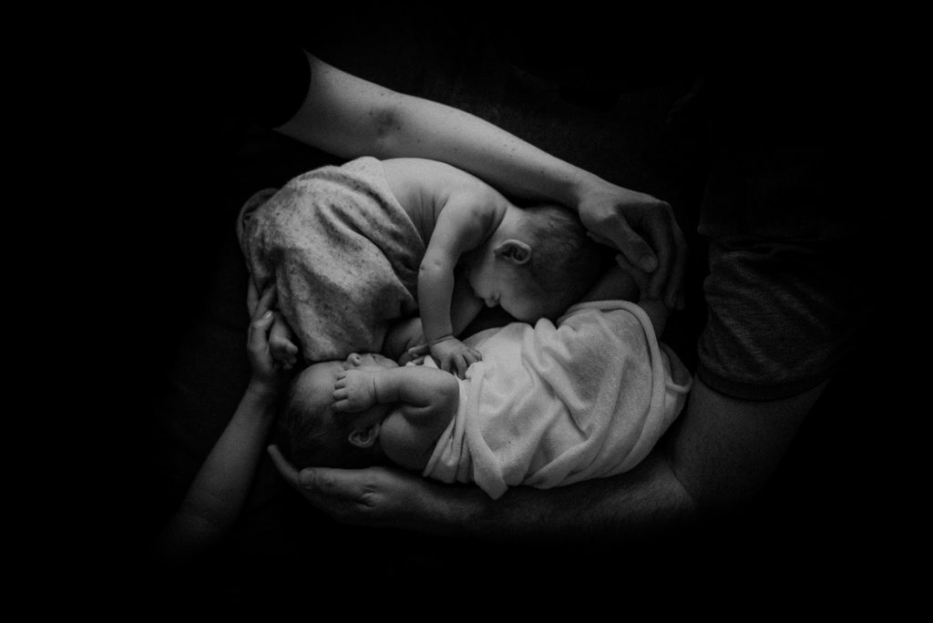 twins newborn photographer melbourne
