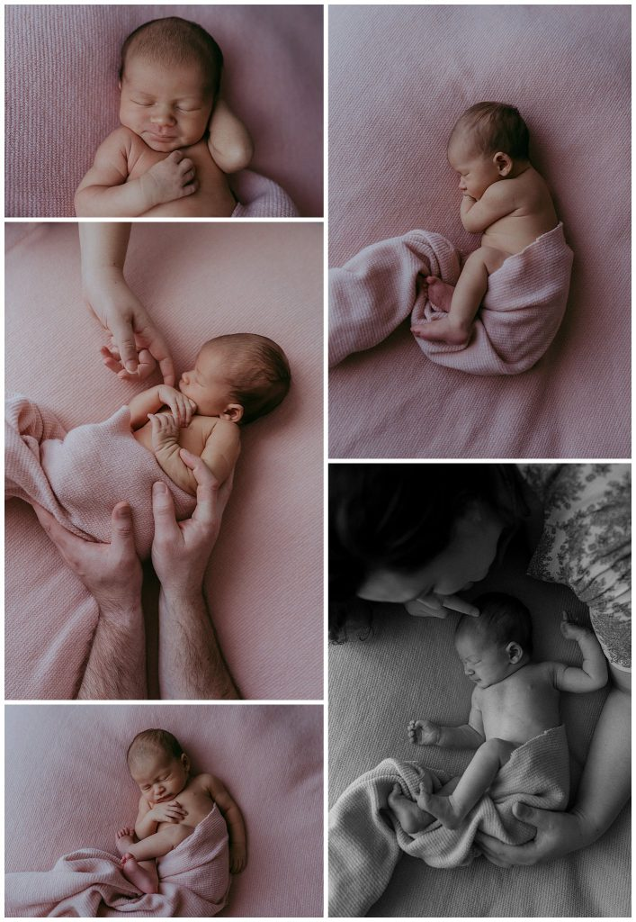 melbourne newborn images